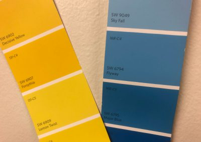 Chose colors for the walls - Flyway and Lemon Twist